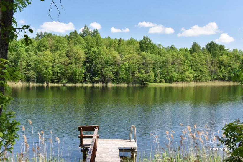 Сельский дом и баня у озера в Игналинском районе - 44