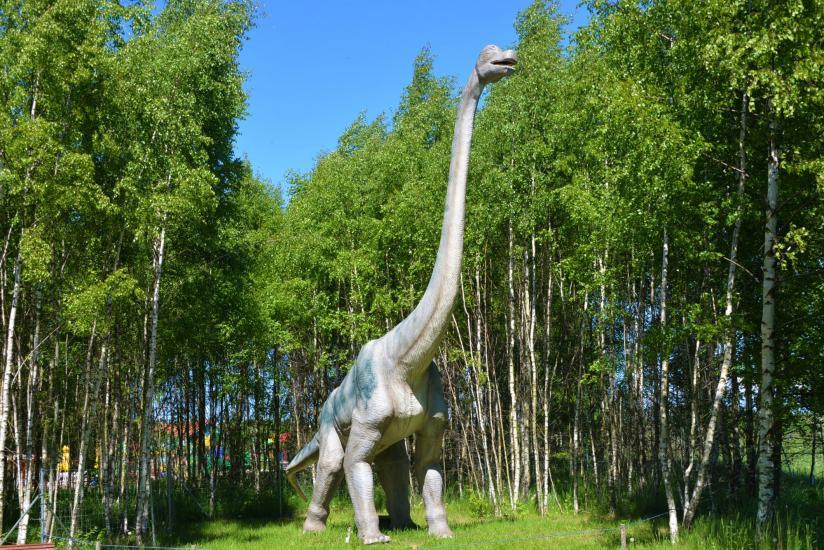 RADAILIU DVARAS - park of dinosaurs - apartment - restaurant- banquets - weddings near Klaipeda - hotel - restaurant - saunas. 7km from Klaipeda - 59