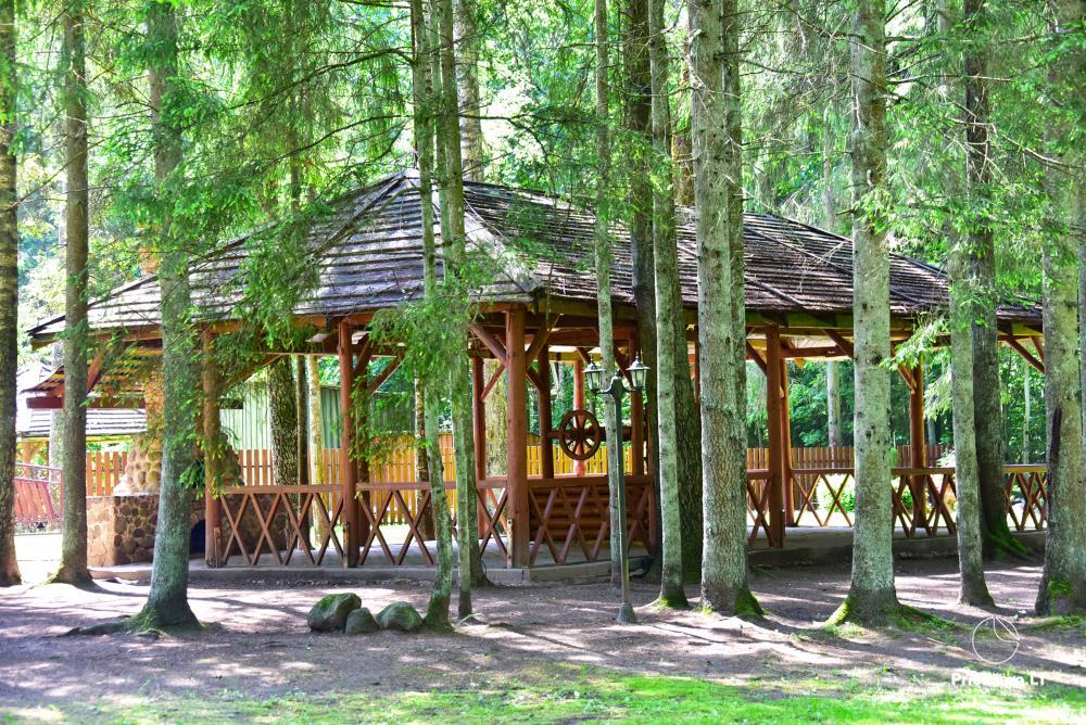 Homestead in Siauliai region Pageluvio Šilas - 23