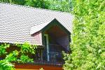 Homestead in Siauliai region Pageluvio Šilas