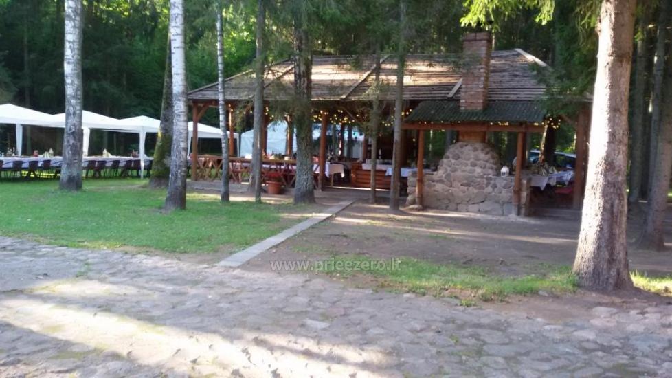 Homestead in Siauliai region Pageluvio Šilas - 39