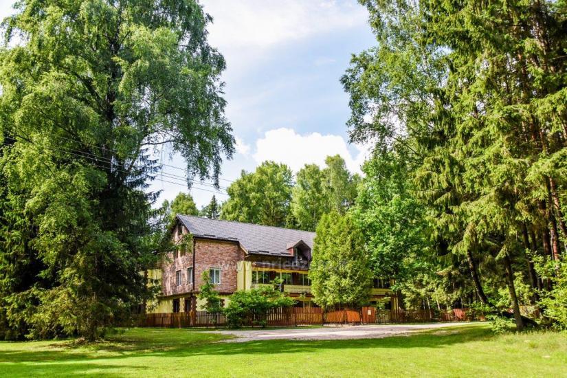 Homestead in Siauliai region Pageluvio Šilas - 3