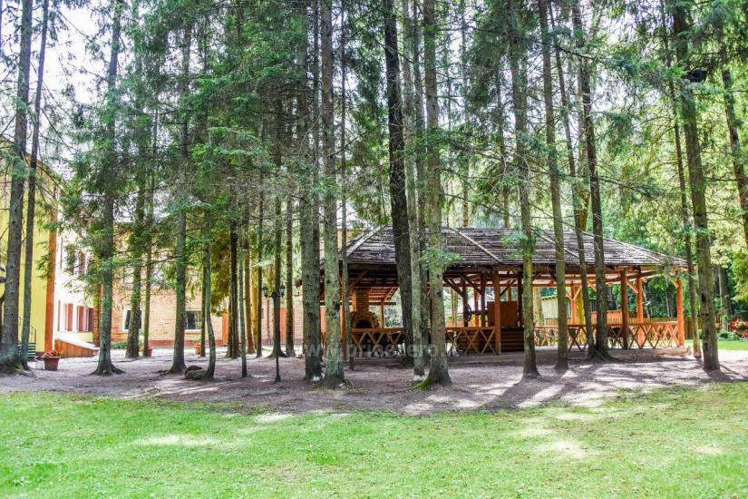 Homestead in Siauliai region Pageluvio Šilas - 41