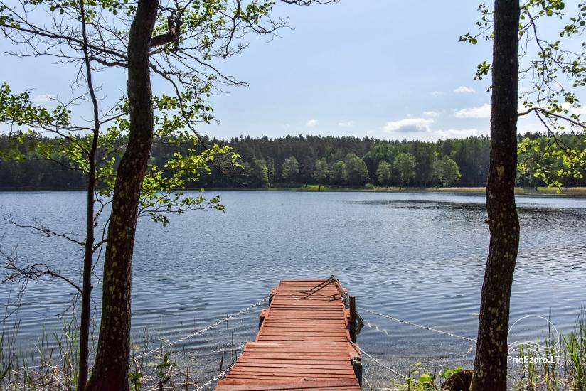 Homestead in Ignalina region Homestead Sakarva - 42