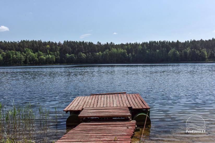 Homestead in Ignalina region Homestead Sakarva - 43