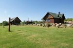 Countryside homestead in Lithuania in Lazdijai region - 8