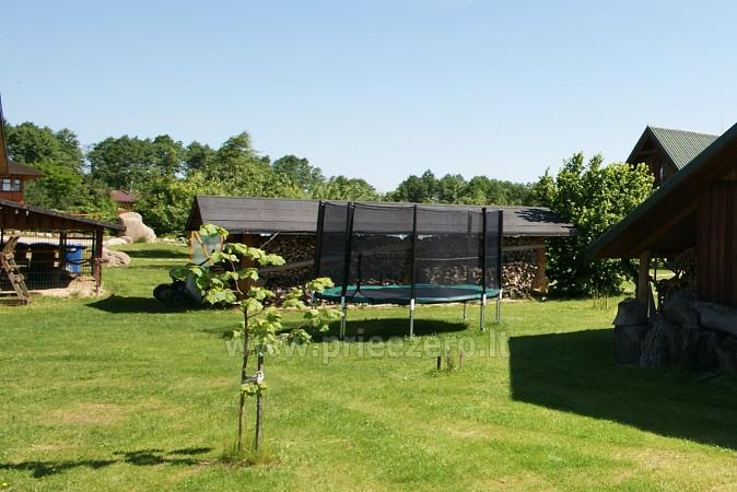 Countryside homestead in Lithuania in Lazdijai region - 9
