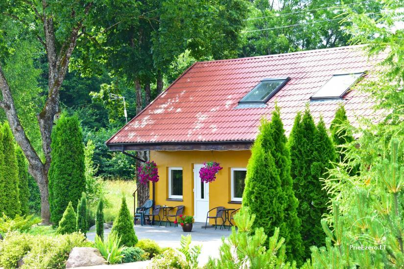 Homestead by the river in Alseikiai village Alsė for celebrations. Banquet hall, 2 saunas - 33