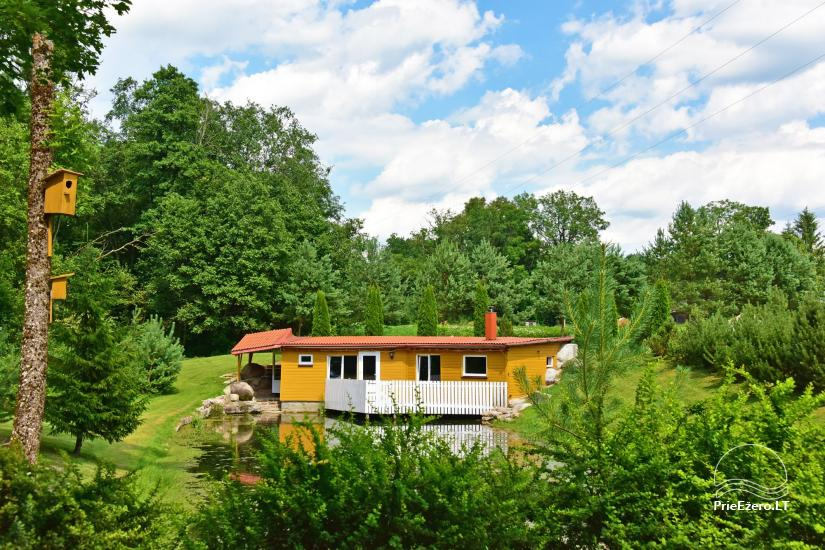 Homestead by the river in Alseikiai village Alsė for celebrations. Banquet hall, 2 saunas - 41