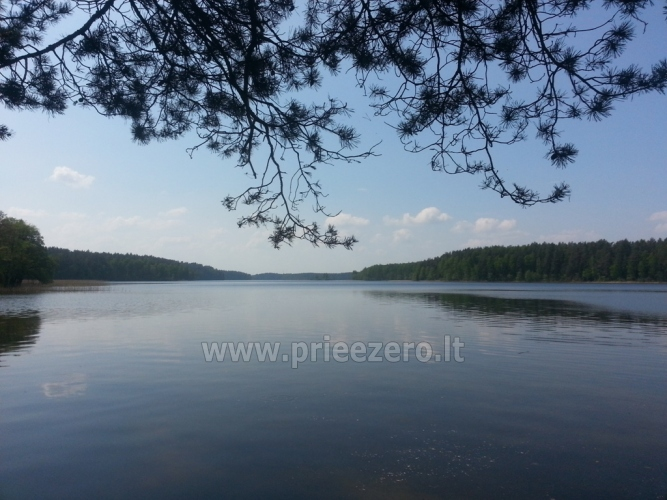 Homestead - camping and holiday cottages in Moletai region at the lake Siesartis - 14