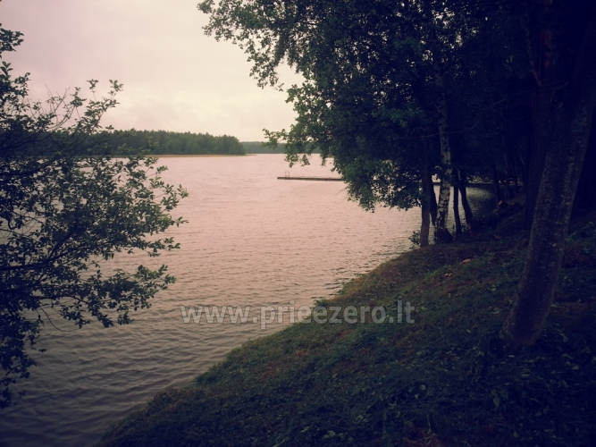 Homestead - camping and holiday cottages in Moletai region at the lake Siesartis - 12