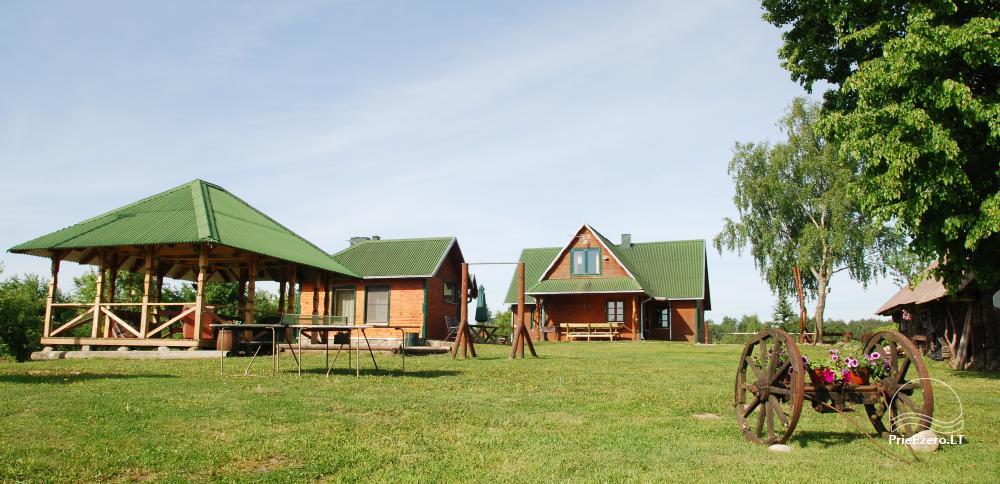 Farmstead by the lake, in Lazdijai area - 3