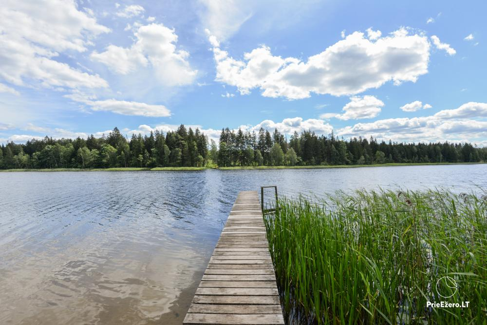 Homestead in Lazdijai region 20 kilometers to Druskininkai - 6