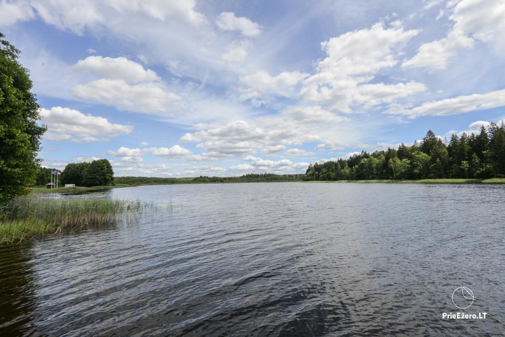 Homestead in Lazdijai region 20 kilometers to Druskininkai - 5