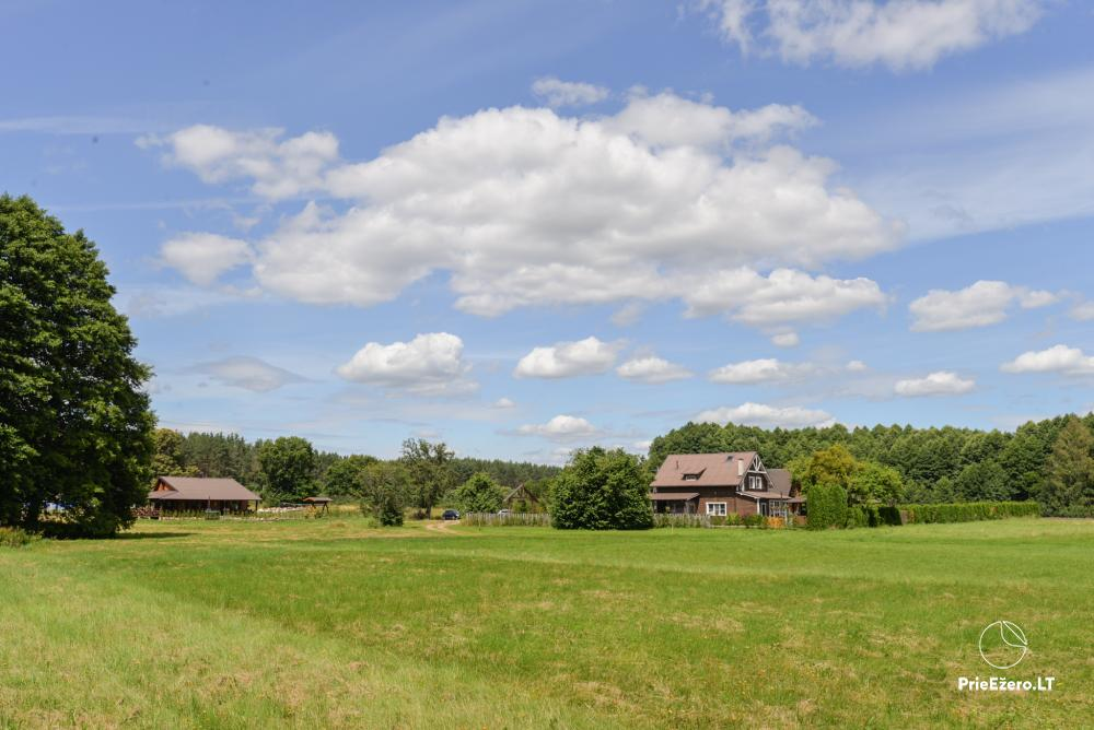 Homestead in Lazdijai region 20 kilometers to Druskininkai - 4
