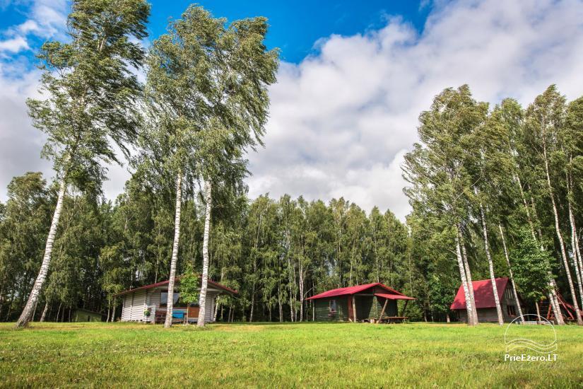 Homestead Minavuonė in Telsiai region at the lake - 20