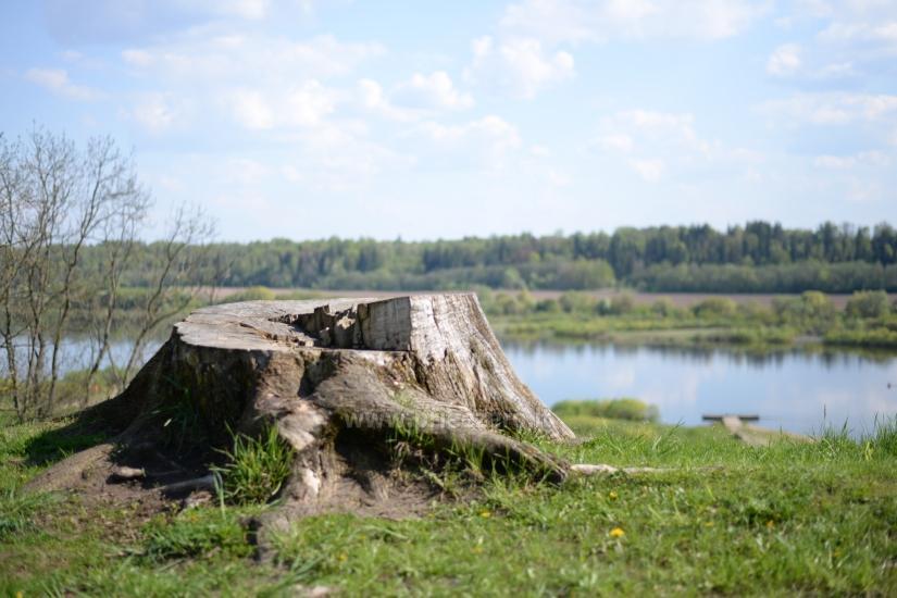 Veliuona mound, Jurbarkas district - 14