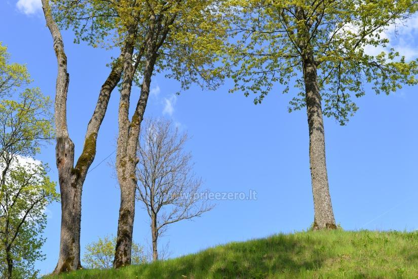 Veliuona mound, Jurbarkas district - 15