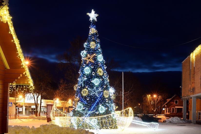 Foto Weihnachtsbaum.Weihnachtsbaum Eroffnung Veranstaltung In Trakai