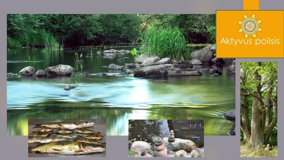 Прокат байдарок, походы по реке Вирвите - усадьба «Angelų malūnas» - 7