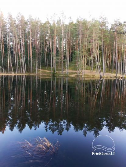 Zwiedzanie w Parku Regionalnym Labanoras na Litwie - 1