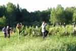 Сельский туризм на берегу реки