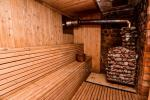 Sauna with a sitting room, jacuzzi and billiards - 6