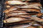 Smoked fish - 8