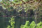 Walking tours in Labanoras Regional Park in Lithuania - 6