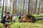 Walking tours in Labanoras Regional Park in Lithuania - 4