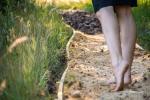 Barefoot trail - 8